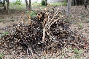 yard-waste-wood-pile
