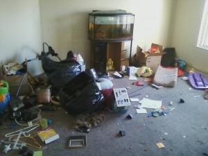 Foreclosure Cleanouts Junk Lion